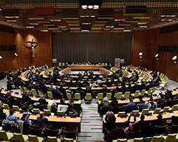 mcm Screening UN